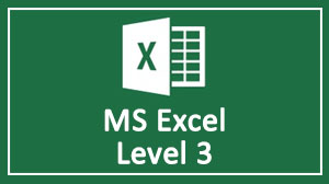 MS Excel Level 3 Training