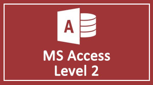 MS Access Advance Level Training Course in Dubai