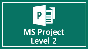 MS Project Advance Level Training