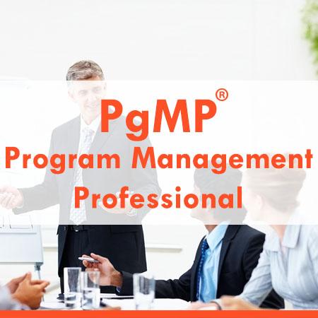 PMI Program Management Professional Exam Prep Course