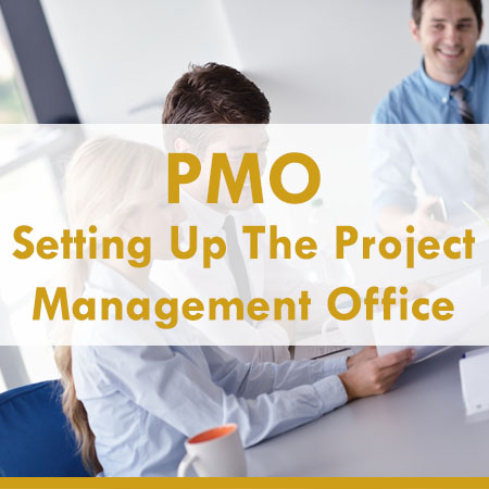Setting up the project management office
