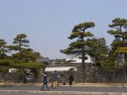 Palacio imperial 023