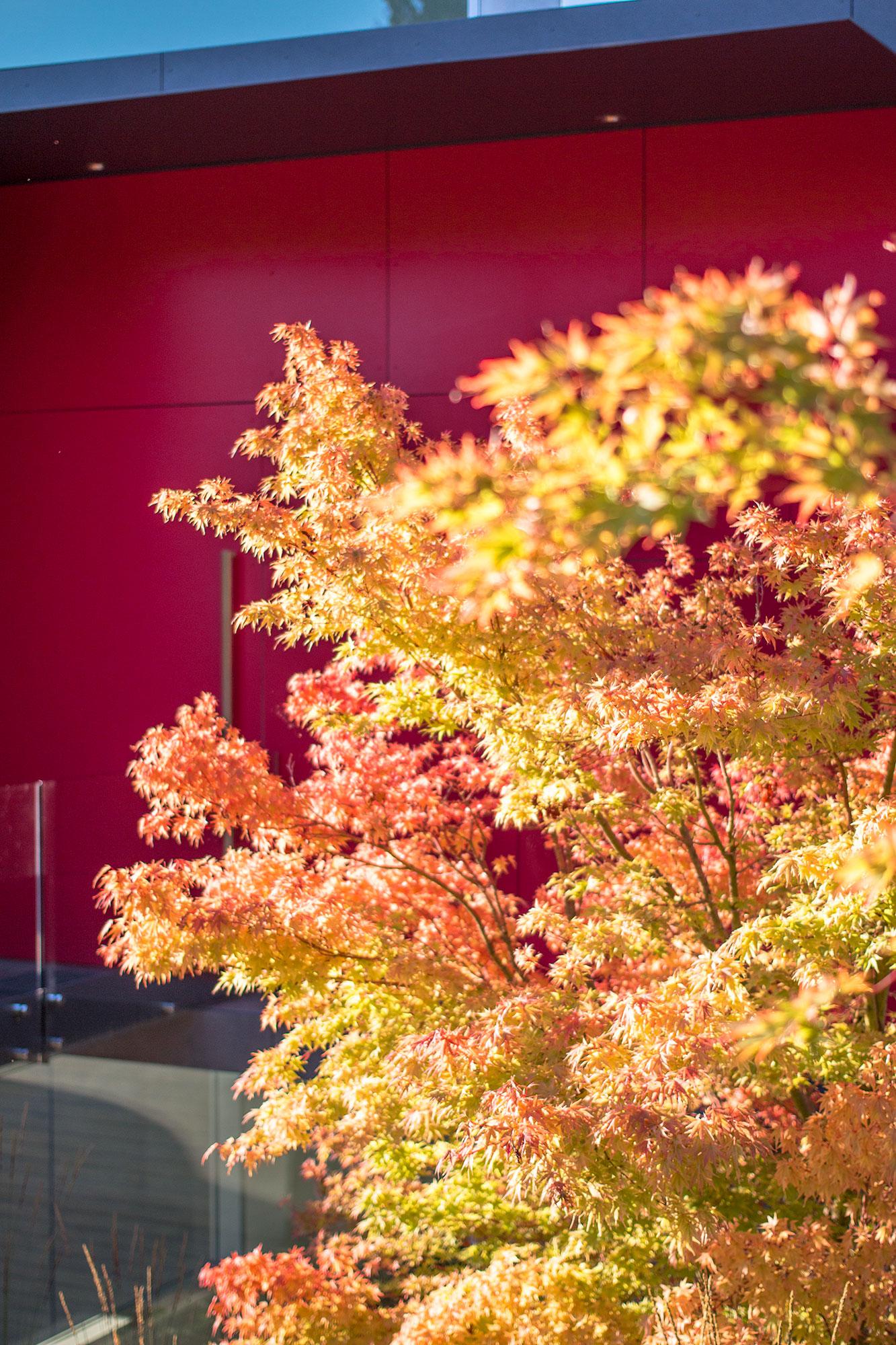 Botanica Design | Photo by: Hank White
