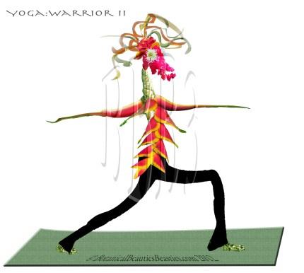 Birdelini Yoga Warrior Pose