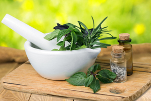 Course on herbalism introduction and herbal medicine making