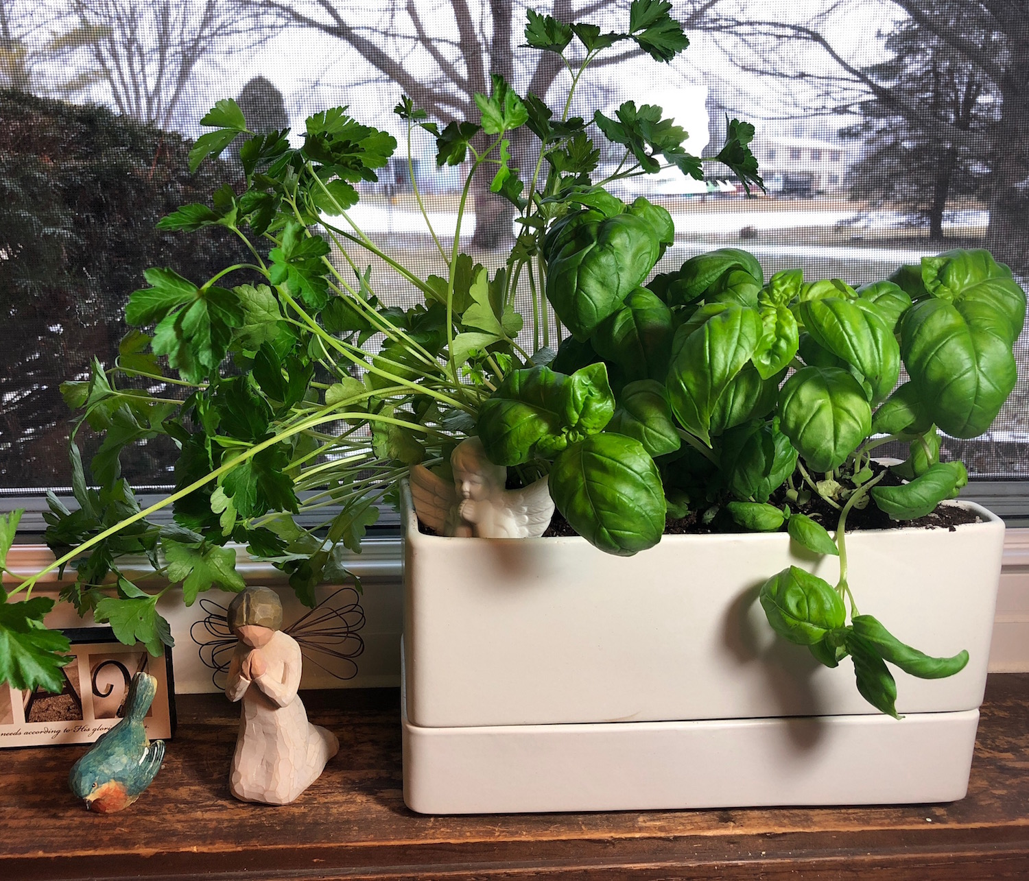 Indoor Herb Garden Winter Indoor herb garden growing herbs indoors indoor house plants workwithnaturefo