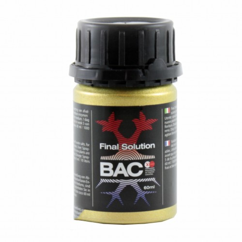 final-solution-bac