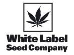 white-label-seeds