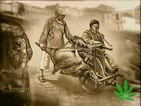 Algo de Historia. Introducción al Cannabis