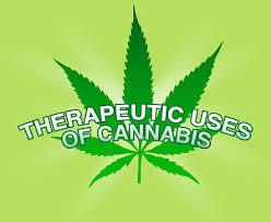 cannabis-terapeutico1