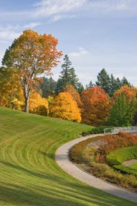 Landscape Evaluation and Inspection Services