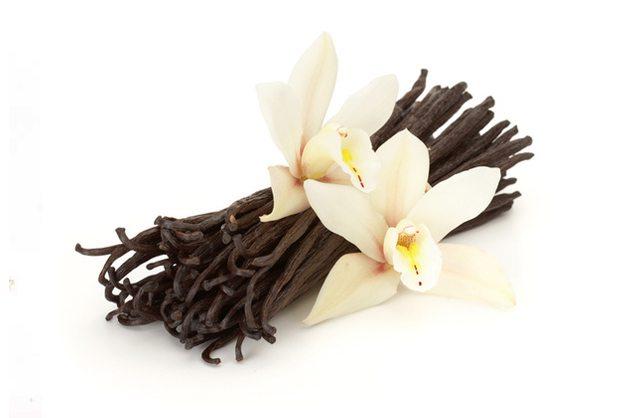 properties of vanilla essential