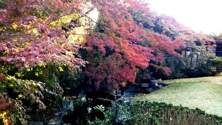 フォーエバー現代美術館(八坂倶楽部)の庭園