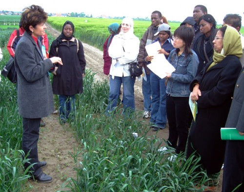 A group of people listening to a talk on crops.