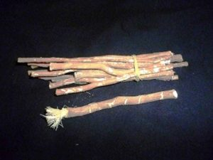 Miswak used for dental health. Photo: Iqbal Osman / Wikipedia