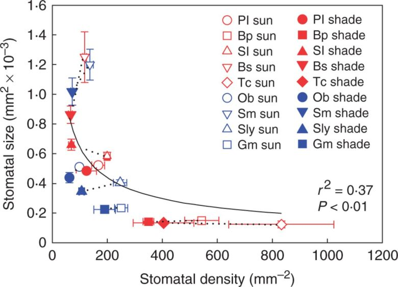 Mean stomatal size and stomatal density ± s.d. across species