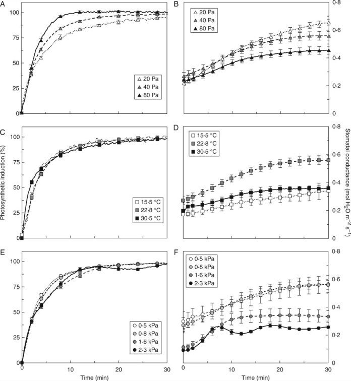 Photosynthetic induction and stomatal conductance in dark-adapted tomato leaves.