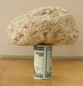 Pumice on 20 dollars