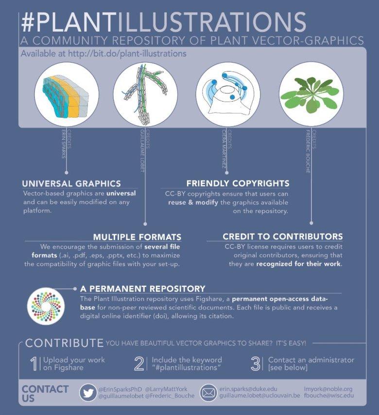 Plant Graphics Infographic