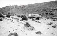 Karroopoort ca. 1923, Levyns