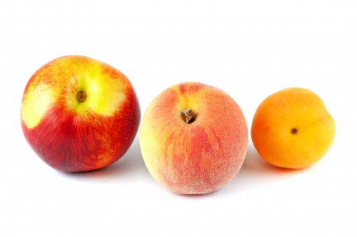 Comparing the Nutrient Values of Apricots, Nectarines