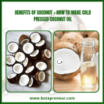 Benefits of Coconut + How To Make Cold Pressed Coconut Oil