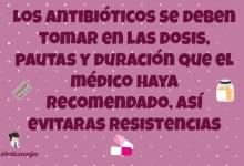 Evita resistencias a antibióticos