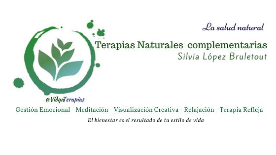 vidya terapias, ansiedad, ira, miedo, depresión, emociones, gestión emocional creencias @MartaBrule @VidyaTerapias Silvia Brule López Bruletout