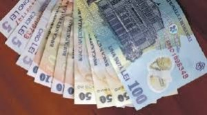 bani multi