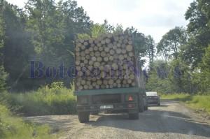 camion cu lemne padure botosani