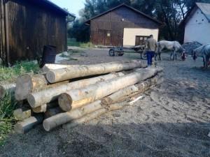 lemne fara documente (1)