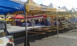 festivalul-verii-1