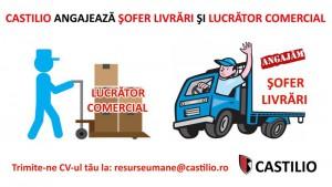 sofer livrari si lucrator comercial (1)