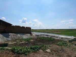 agromer srl, stiri, botosani , bazin dejectii