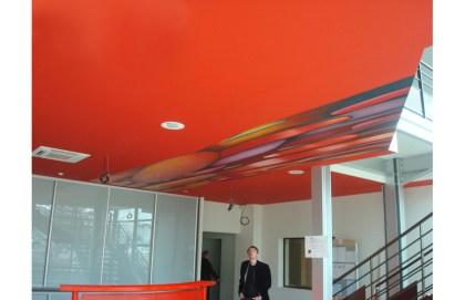 bottazzi_painting_ceiling_public_art_4