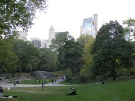 New York 084