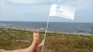 La Voie du St-Laurent - les pieds dans le vent