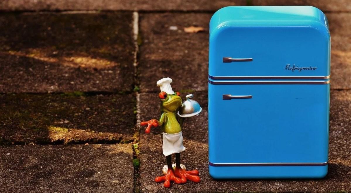 Wein im Kühlschrank lagern – keine gute Idee