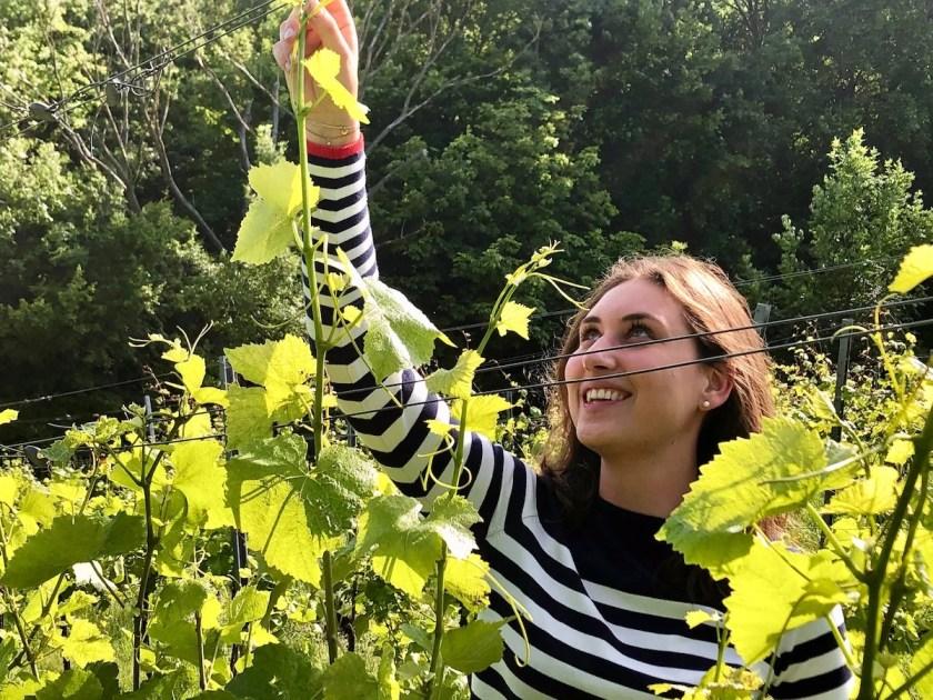 Die angehende Winzerin Benita Lobner kümmert sich um die Rebenpflege im Weingarten.