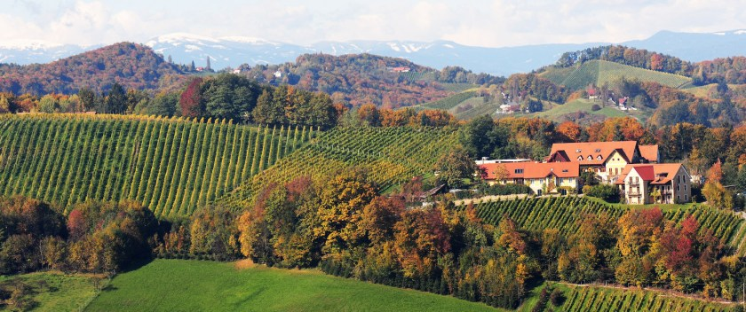 Panoramablick auf den Sattlerhof in der Südsteiermark