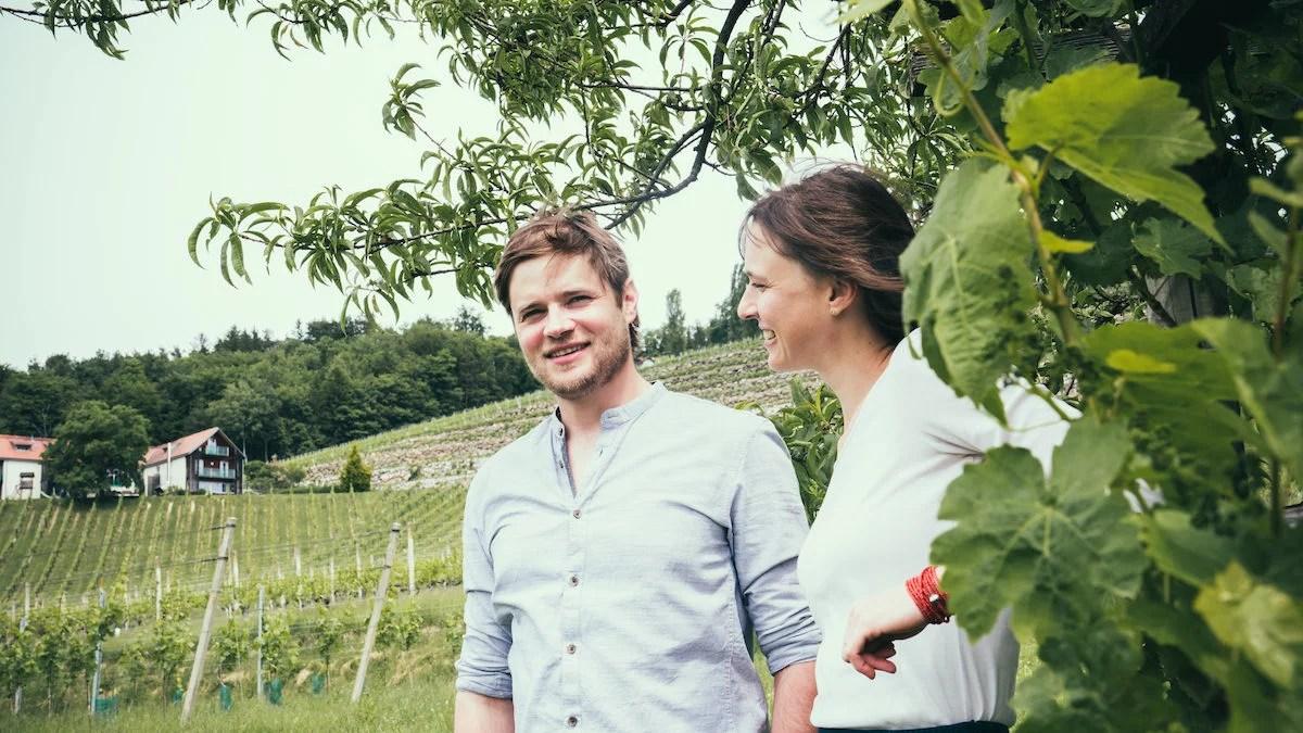 Weingut Gross: Südsteirische Herkunft erschmecken