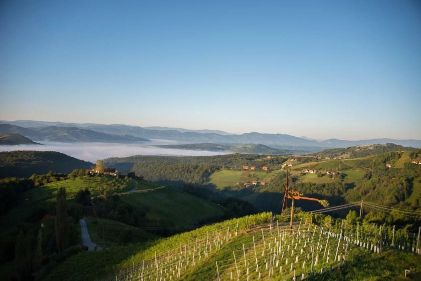 Blick von der Ried Steinriegel in die Südsteiermark