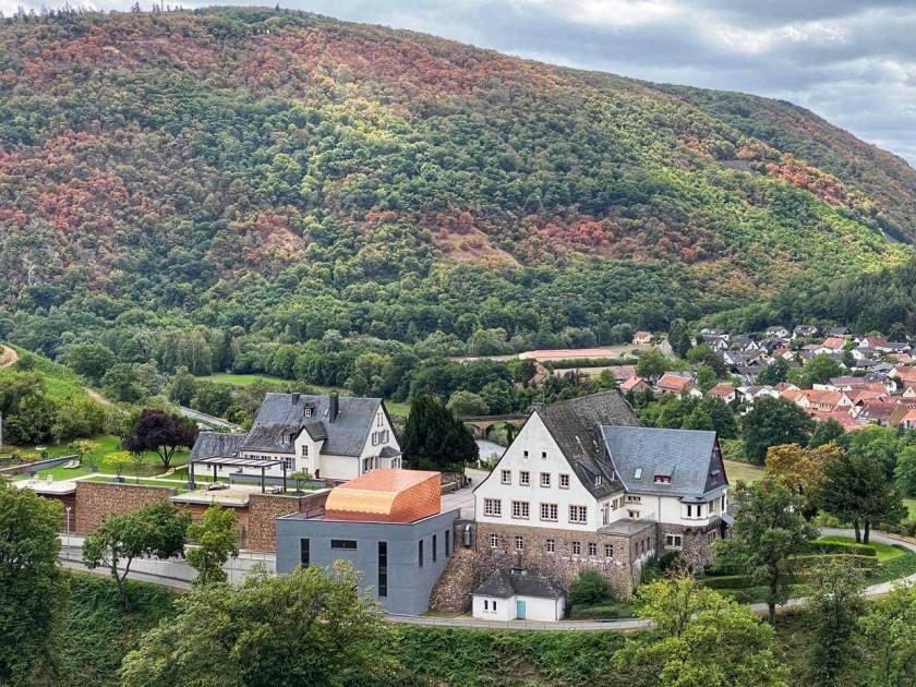 Blick auf Gut Hermannsberg von den Weinbergen aus
