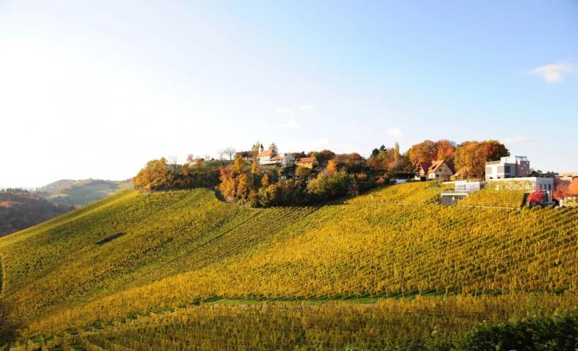 Weingut Tement und Ried Zieregg im Herbst