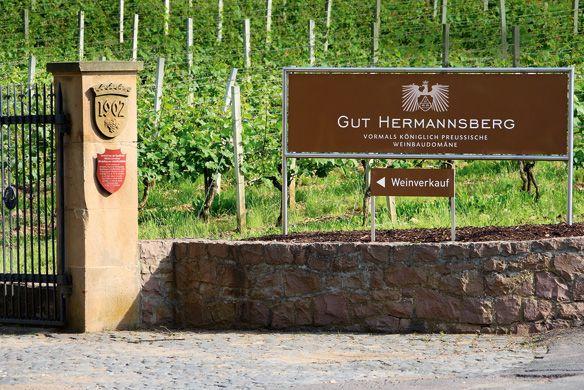 Einfahrt zum Weingut Gut Hermannsberg an der Nahe