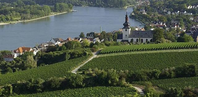Roter Hang: Rheinhessens Lagen-Legende