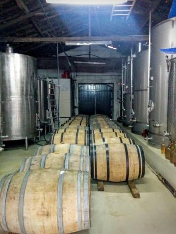 Humus cellar