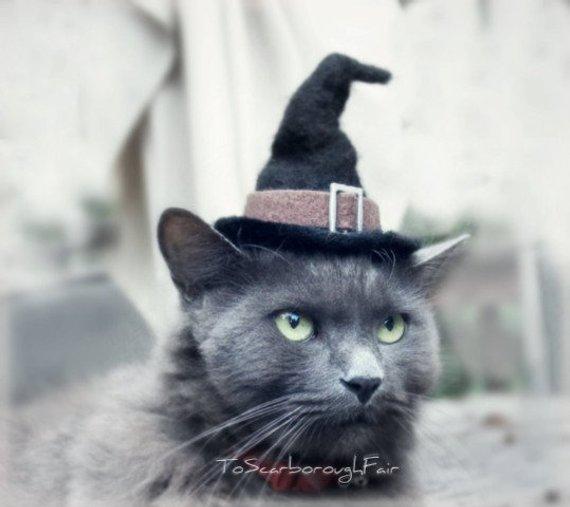 Cat Halloween Costume from ToScarboroughFair | Halloween 2018 | Bottom Left of the Mitten