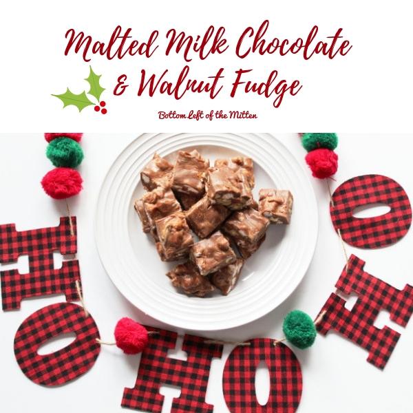 Malted Milk Chocolate Walnut Fudge | Bottom Left of the Mitten