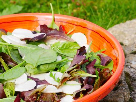 Salade d'automne.